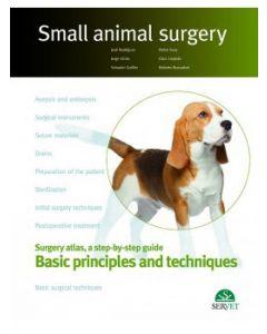 Basic principles and techniques (Inclui Ebook)